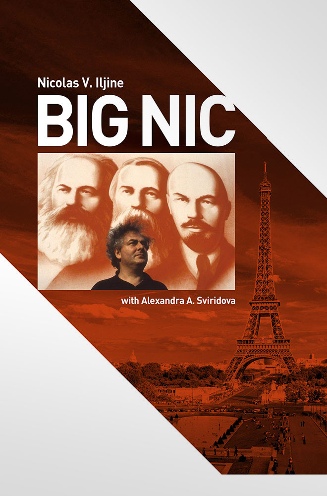 BIG NIC book cover